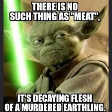 Funny Yoda Memes - yoda truth be told vegan vegan lifestyle pinterest vegans