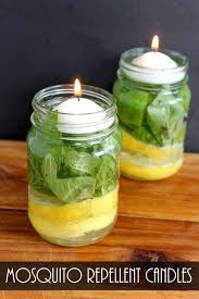 make mosquito repellent candles summer gardens and backyard