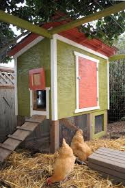 62 best backyard chickens images on pinterest chicken houses