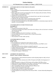 resume exles college students applying internships in nyc customer service intern resume sles velvet jobs