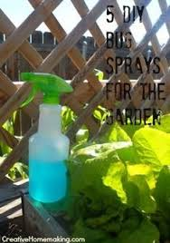 Rabbit Repellent For Gardens by Natural Homemade Garden Bug And Pest Repellent Even Deters