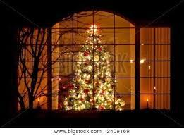 67 best christmas lights outside images on pinterest christmas