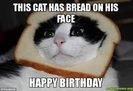 Grumpy Cat Meme Happy Birthday - incredible happy birthday memes for you top collections