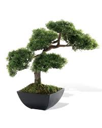 artificial tree artificial cypress silk bonsai tree at officescapesdirect