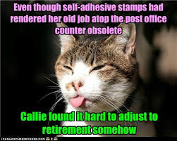 Retirement Meme - lolcats retirement lol at funny cat memes funny cat pictures