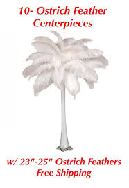 ostrich feather centerpiece 10 ostrich feathers centerpieces w 23 25 feathers and free