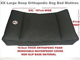 coussin de luxe pour canapé millies coussin luxe orthopédique pour chien doux haute densité