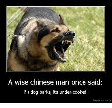 Chinese Man Meme - a wise chinese man once said if a dog barks it s under cooked