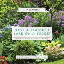 how to have a beautiful yard on a budget