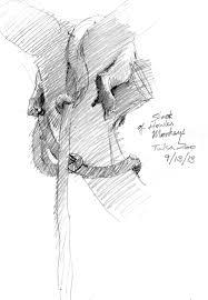 friday fauna jungle escape pod u2013 drawing the motmot