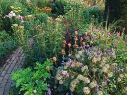Carol Klein Life In A Cottage Garden - garden design garden design with buy the cottage garden