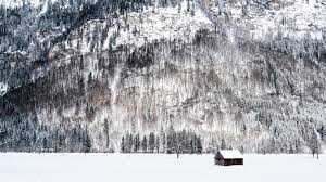 free stock photo of winter with snow and trees with cabin in