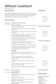 Resume Sample For Banking Operations by Branch Manager Resume Samples Visualcv Resume Samples Database