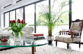 artificial house plants living room perfect for conservatory