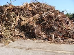 garbage collection kitchener buy paper yard waste bags
