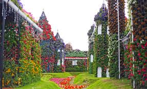dubai miracle garden and the world u0027s largest floral installation