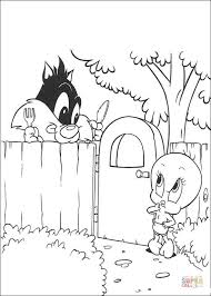 sylvester tweety coloring free printable coloring pages
