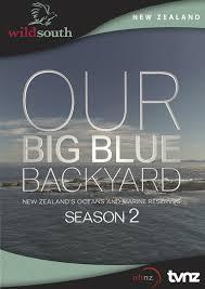 Backyard Science Dvd Our Big Blue Backyard Season 2 Dvd In Stock Buy Now At