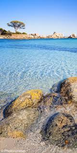 33 best corsica images on pinterest frances o u0027connor travel and
