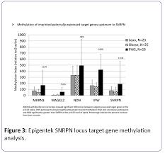 examination of global methylation and targeted imprinted genes in