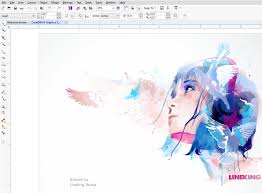 coreldraw graphics suite x7 illustration products