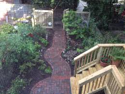 transform your ugly overgrown backyard into an oasis