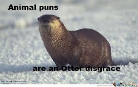 Animal Pun Meme - animal puns by project hamster meme center