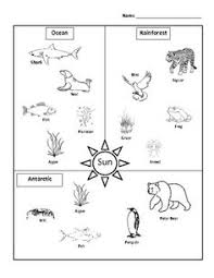 here u0027s a page for constructing a desert food web food chains