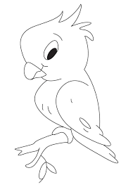 shy parrot coloring download free shy parrot coloring