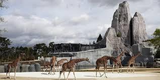 bureau de change vincennes zoo de vincennes week end gratuit pour les enfants