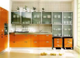 Smoked Glass Cabinet Doors Kitchen Door Glass Designs Art Glass Kitchen Cabinet Door Have