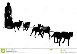 sled dog race stock illustrations u2013 43 sled dog race stock