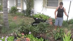 florida permaculture sheet mulch bed youtube