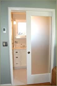 Panel Blinds Types Of Closet Doors Panel Blinds For Door Arresting Bathroom
