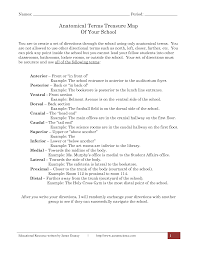 18 best images of anatomy directional terms worksheet anatomical