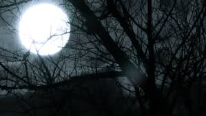 template i moon for a horror stock footage