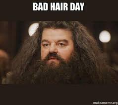 Bad Hair Day Meme - bad hair day hagrid i should not have said that make a meme