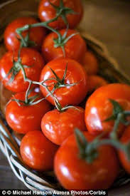 gout food to avoid tomato foods to avoid uric acid build up best