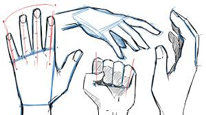 draw how to draw hands and hand poses youtube