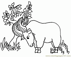 pages ram fighting tree animals free printable coloring page