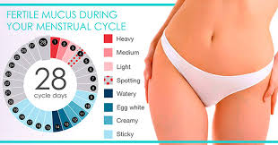 Light Bleeding Before Period 4 Warning Signs Of Low Progesterone And How To Deal With It