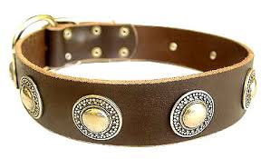 dog necklace leather images Deluxe leather dog collar with jewelry for schutzhund dogs c73 jpg