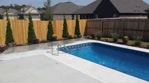south narcissus landscaping around pool proactive landscaping