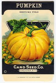 vintage halloween clip art adorable pumpkin seed packet the