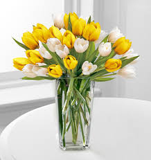 Tulip Bouquets Yellow And White Tulips Bouquet Next Day Flower Delivery