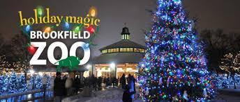 brookfield zoo winter lights brookfield zoo holiday lights magic discount tickets chicagofun com