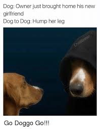 Dog Girlfriend Meme - dog owner just brought home his new girlfriend dog to dog hump her