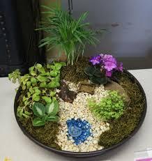 Dish Garden Ideas Dish Gardens Designs Attractive Inspiration 1 On Home Design Ideas