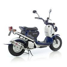 Honda Rugged Scooter Honda Ruckus Zoomer Scooter Pictures Motorcycle