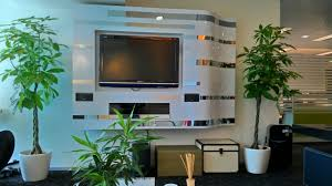 skyland gardening office indoor plants